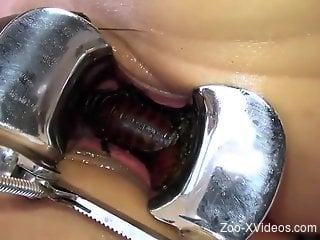 Sexy insects crawling inside of a skinny slut's pussy