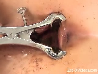 Worms filling up a blonde's hot pussy on camera